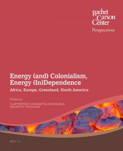 The Effects of African Colonialism Essay Sample