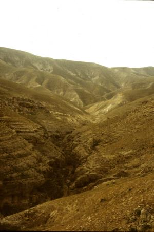 A canyon in the Negev desert.