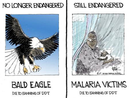 A cartoon by Chip Bok linking the ban of DDT with malaria victims in Africa