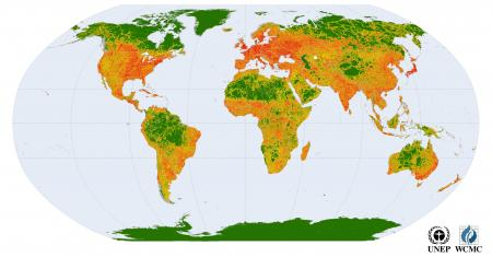 Global wilderness (in green)