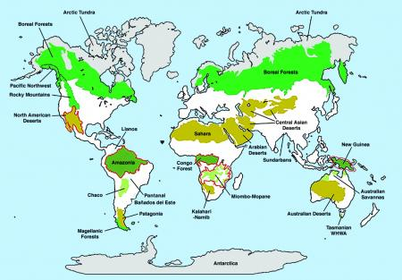 Extension of wilderness areas according to Mittermeier et al. (2003)
