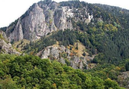 The Virgin Forest of Fraktos