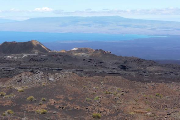 Vulcanic Landscape. Sierra Negra Vulcano, Isabela Island, Galápagos, Ecuador.