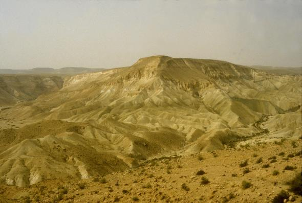 The Negev desert.