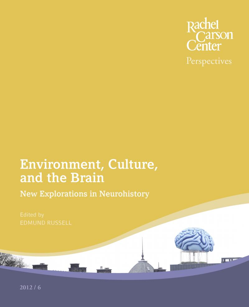 Environment, Culture, and the Brain: New Explorations in ...
