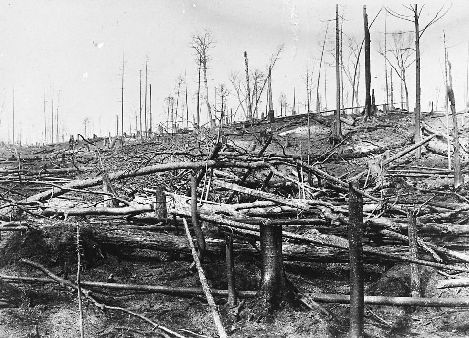 Wildfire suppression