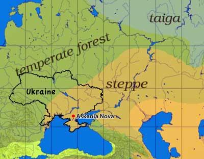 A transformed Landscape The Steppes of Ukraine and Russia