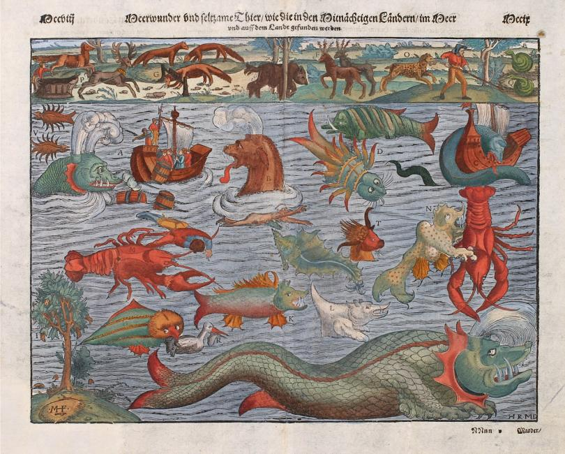 Beauties and Beasts: Whales in Portugal, from Early-Modern Monsters